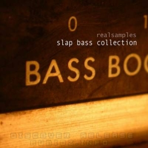 [dead] Realsamples - Slap Bass Collection [MULTIFORMAT] screenshot