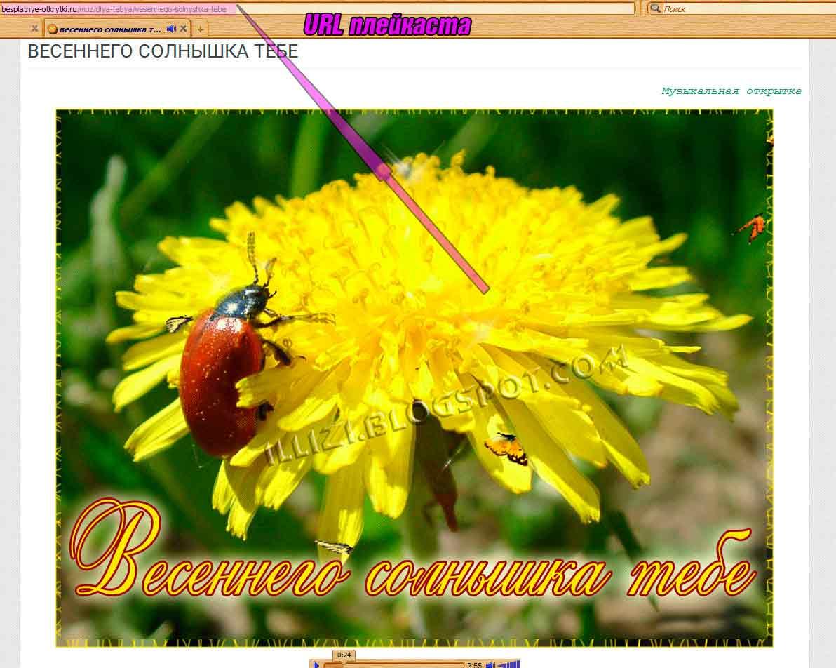 Как отправить открытку в Одноклассниках бесплатно и платно 94