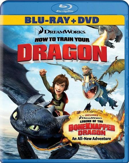 How to Train Your Dragon Blu-Ray cover disneyjuniorblog.blogspot.com