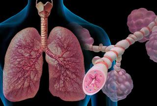 Asthma Attack Medicinal Plants