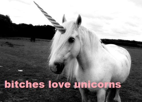 http://4.bp.blogspot.com/-WryBfGQI4d4/UKUvRtw89EI/AAAAAAAASFQ/XIH_FqCwpbA/s1600/unicorn8.jpg