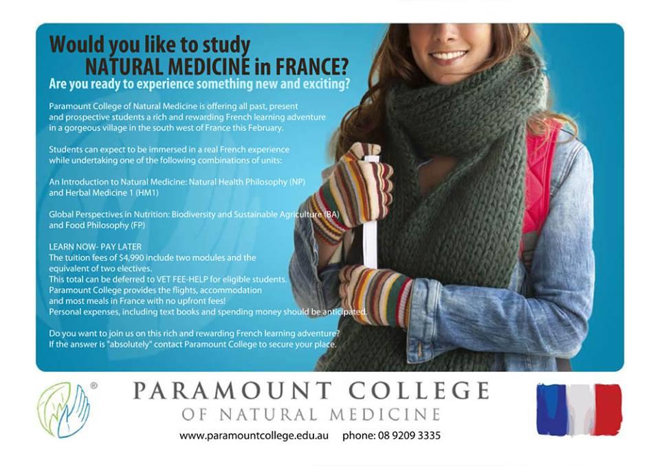 Paramountcollegeedu A Fine Wordpress Site