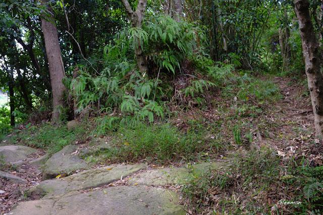 左往圓山風景區、劍潭,右往東吳大學或劍南路,取右徑。