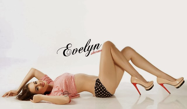 Evelyn+Sharma+Hd+Wallpapers+Free+Download005