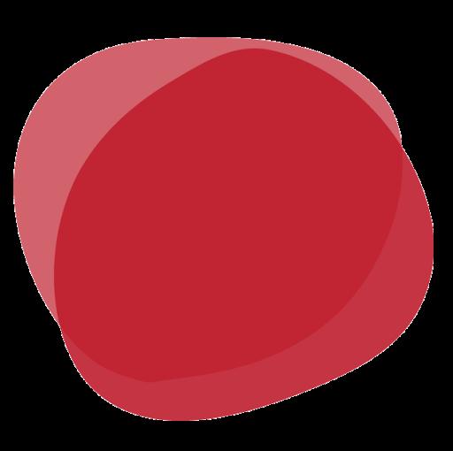 DIDACTALIA