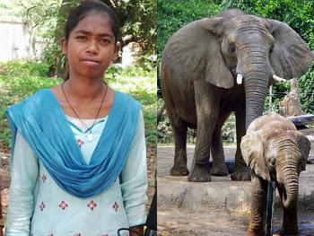 Nirmala, Gadis yang Bisa Berkomunikasi dengan Gajah