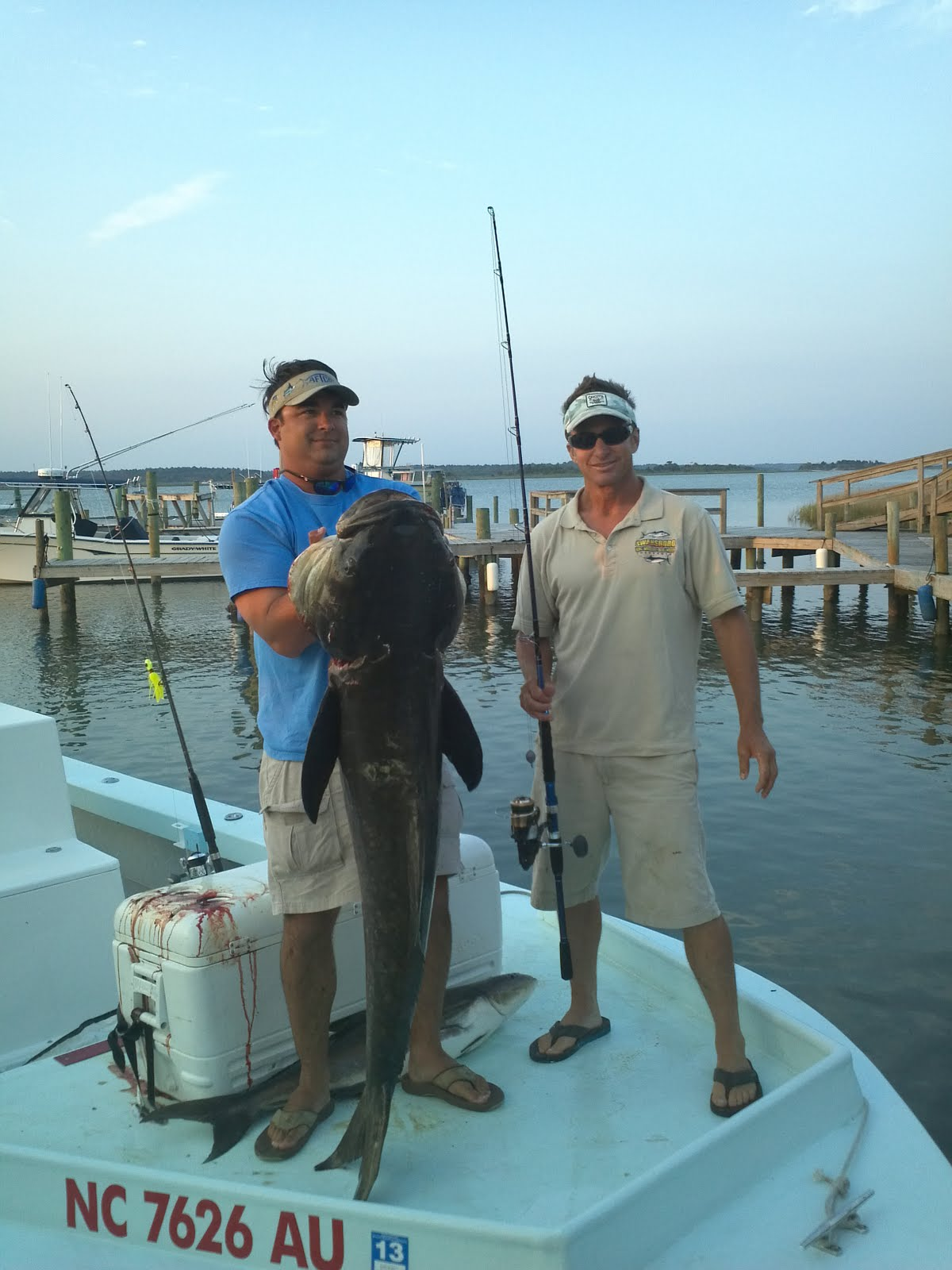 emerald isle fishing report cobia fishing out of emerald