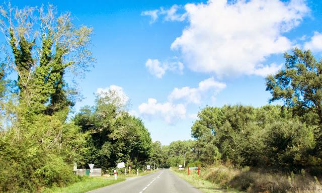 on the road,road trip,landes,moliets,courant du huchet