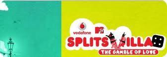MTV Splitsvilla 4 - Banner