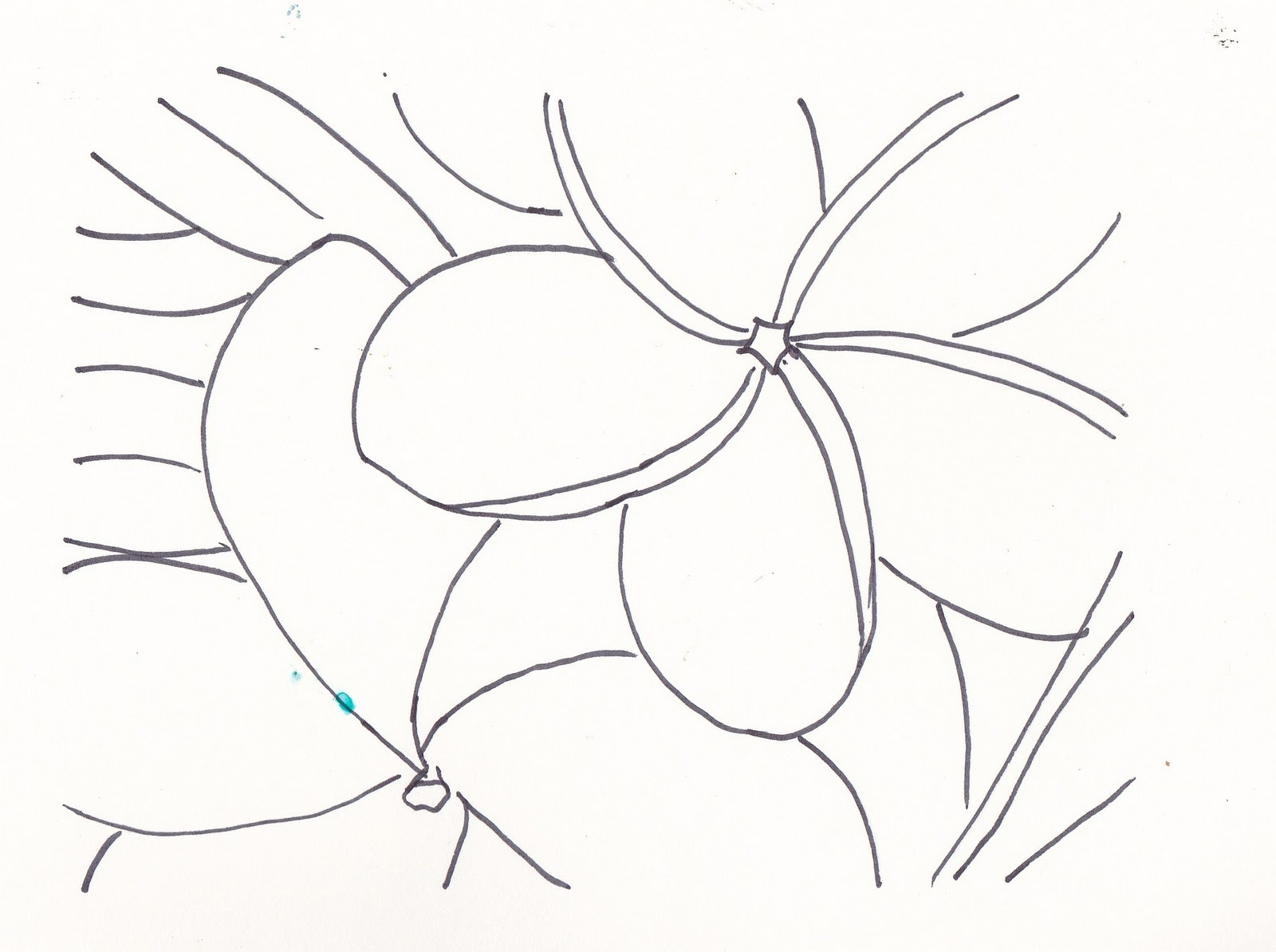 coloring pages of plumerias - photo#15