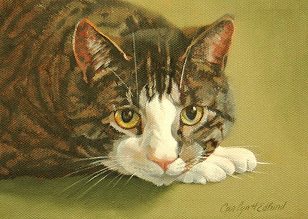 dibujos-de-gatos-pintados-a-mano