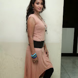 Bhanu Sri Hot Photos at Veedi Pourusham Movie Press Meet 14