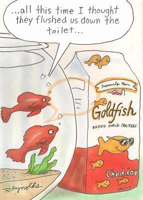 Ralph harris goldfish education for Ok google plenty of fish