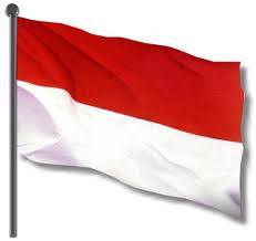Flag of Indonesia Pictures