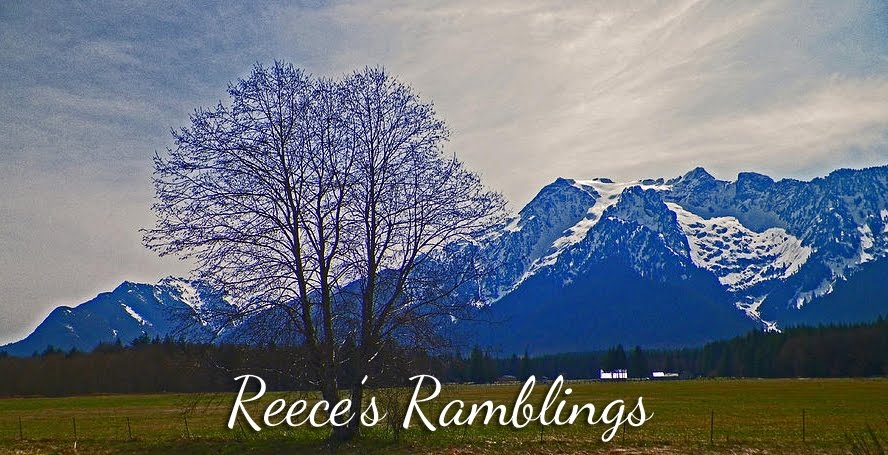 Reece's Ramblings