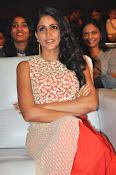 Lavanya Tripathi glam pics-thumbnail-1
