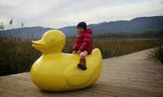 Moby Duck ànec fibra de vidre Andreu Carulla