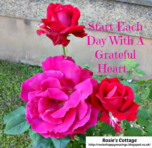 Roses - start each day with a grateful heart