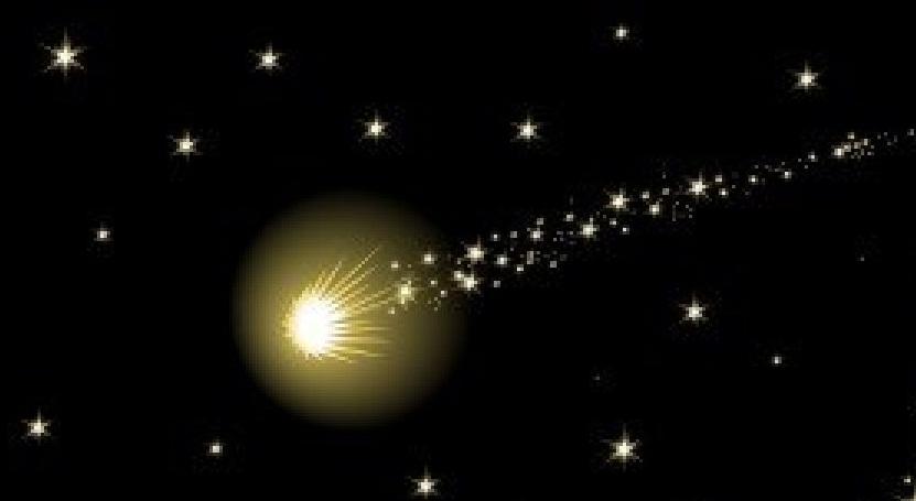 Estela al caminar la peque a estrella de navidad for Estrella fugaz navidad