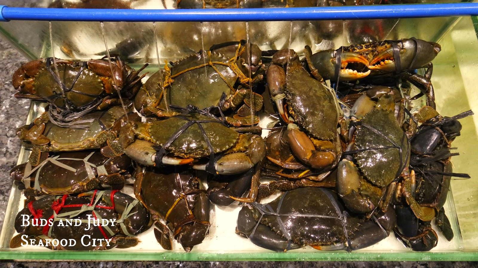 Seafood City. Seafood Restaurant in Cebu City. Crabs