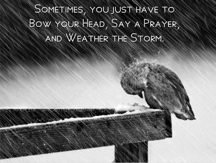 Prayer is ALWAYS the answer to help us weather a storm in our lives.