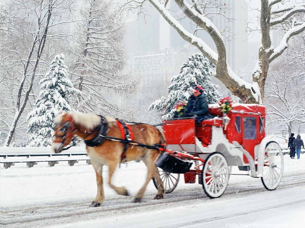 Good   Wallpaper Horse Winter - free-christmas-central-park-new-york-wallpaper_1024x768_88122  Snapshot_545458.jpg
