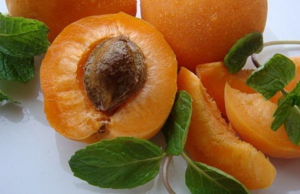 aprikot buahahan yang bagus untuk batuk flu pilek