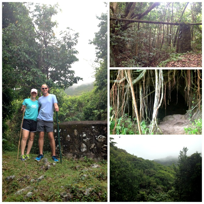 The Holland House: Rainforest Hike