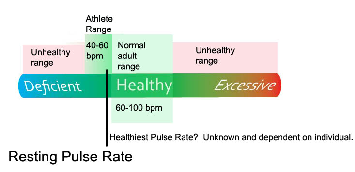 Let's look at Resting Pulse Rate in more detail. A normal adult pulse rate ...