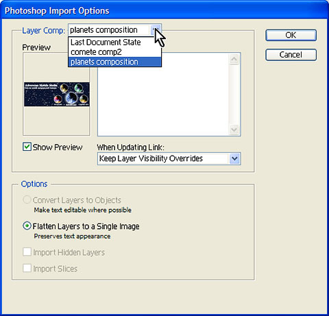 Photoshop Import Options dialog