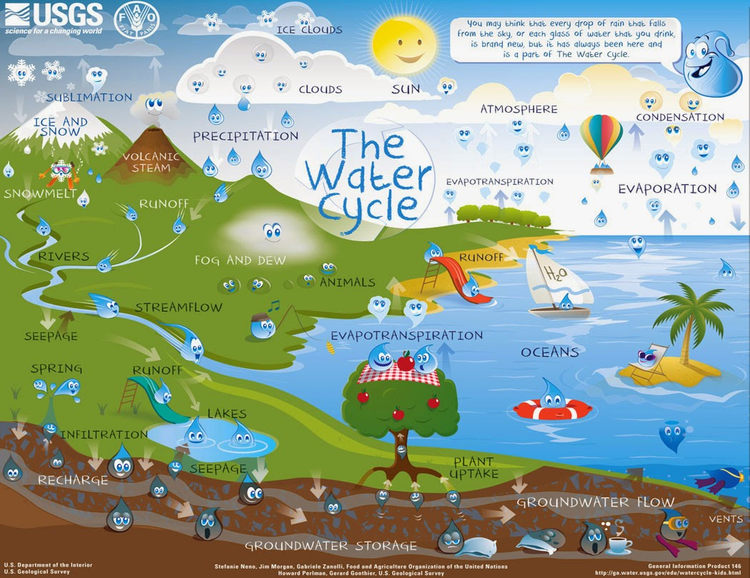 Model of The Water Cycle