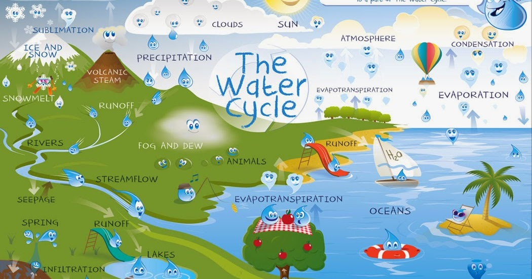 gradwohl family water cycle project