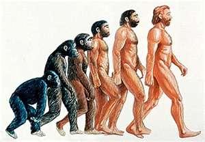 Evolution+Chart.jpg