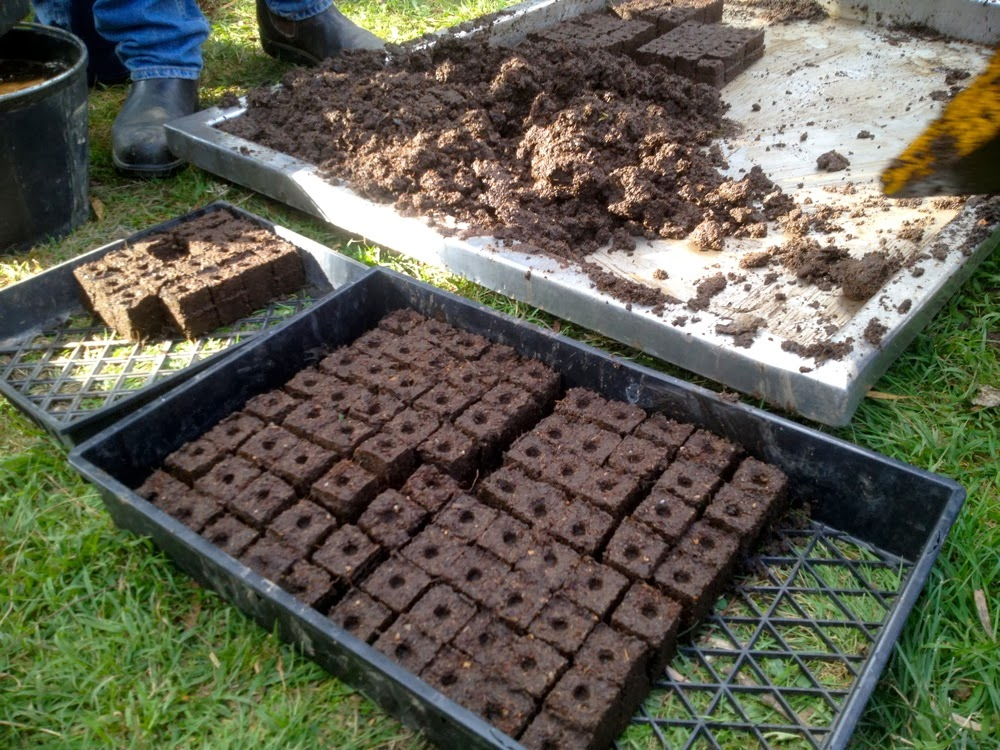 Southern green living diy soil block maker for Soil block maker