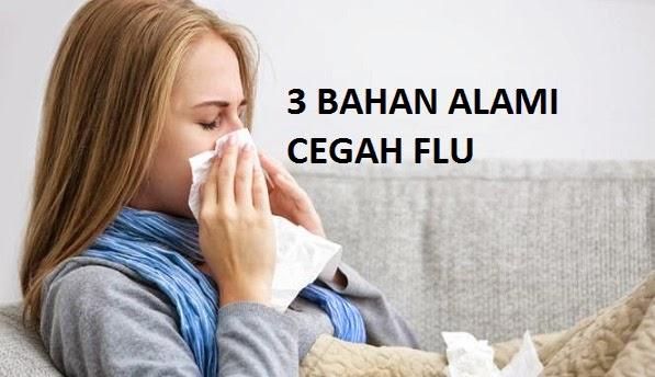 3 Bahan Alami Yang Dapat Mencegah Flu