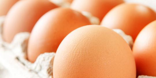 manfaat telur saat sarapan meningkatkan kerja otak