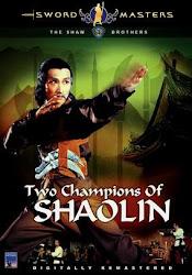 2 Campeões de Shaolin Online Dublado