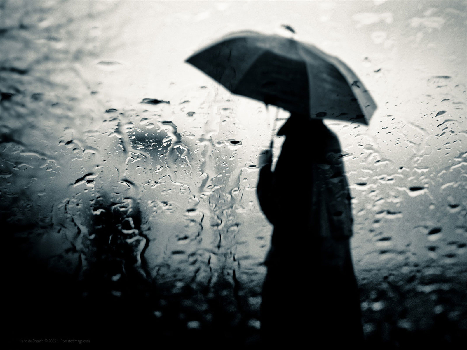 http://4.bp.blogspot.com/-WxShX2nAfHE/T-lnwuGkkSI/AAAAAAAAASI/jG1OE4IQT4k/s1600/Mirror-Downlood-free-rain-wallpaper%2Bfor%2Bdesktop.jpg
