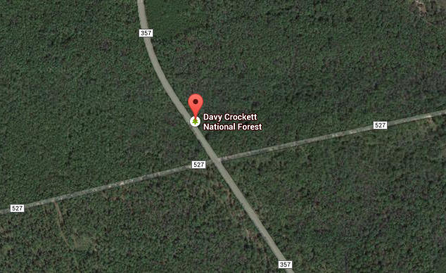 Davy Crockett National Forest