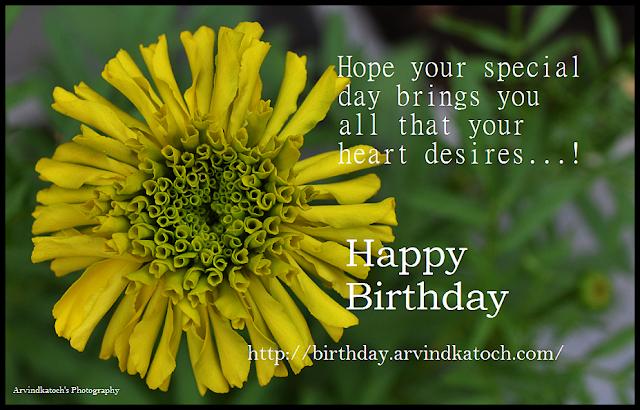 Happy Birthday, Card, HD Birdthay Card, Heart, desiers, special day