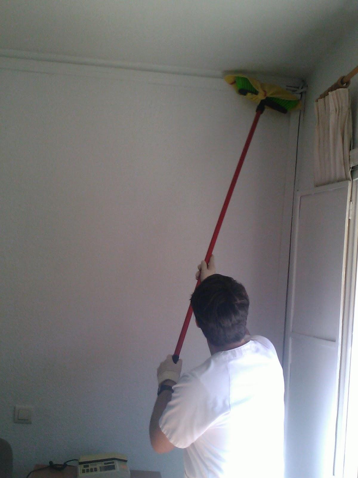 Curso de experto en limpieza y camarera de pisos - Como limpiar paredes ...