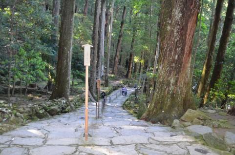 高野山の林道