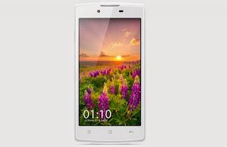 Handphone Oppo Real 20 R831K