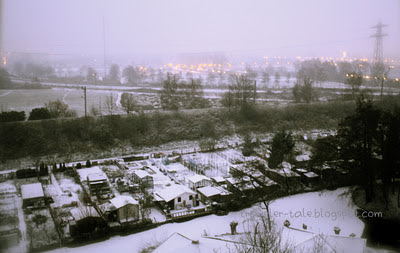 winter in diemen