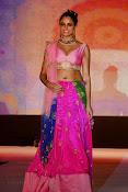 Asmita sood sizzling pics-thumbnail-16