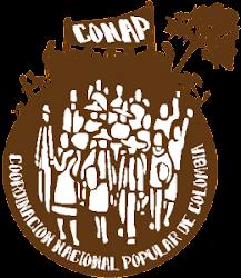 Principales Experiencias Conap - Quindío  Junio 2010 - Agosto 27-2011