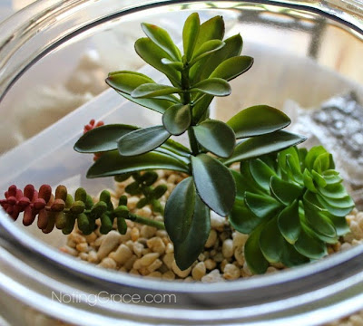 Noting Grace: $25 Faux Succulent Garden