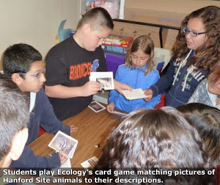 Students play Ecology's card game matching pictures of Hanford Site animals to their descriptions.