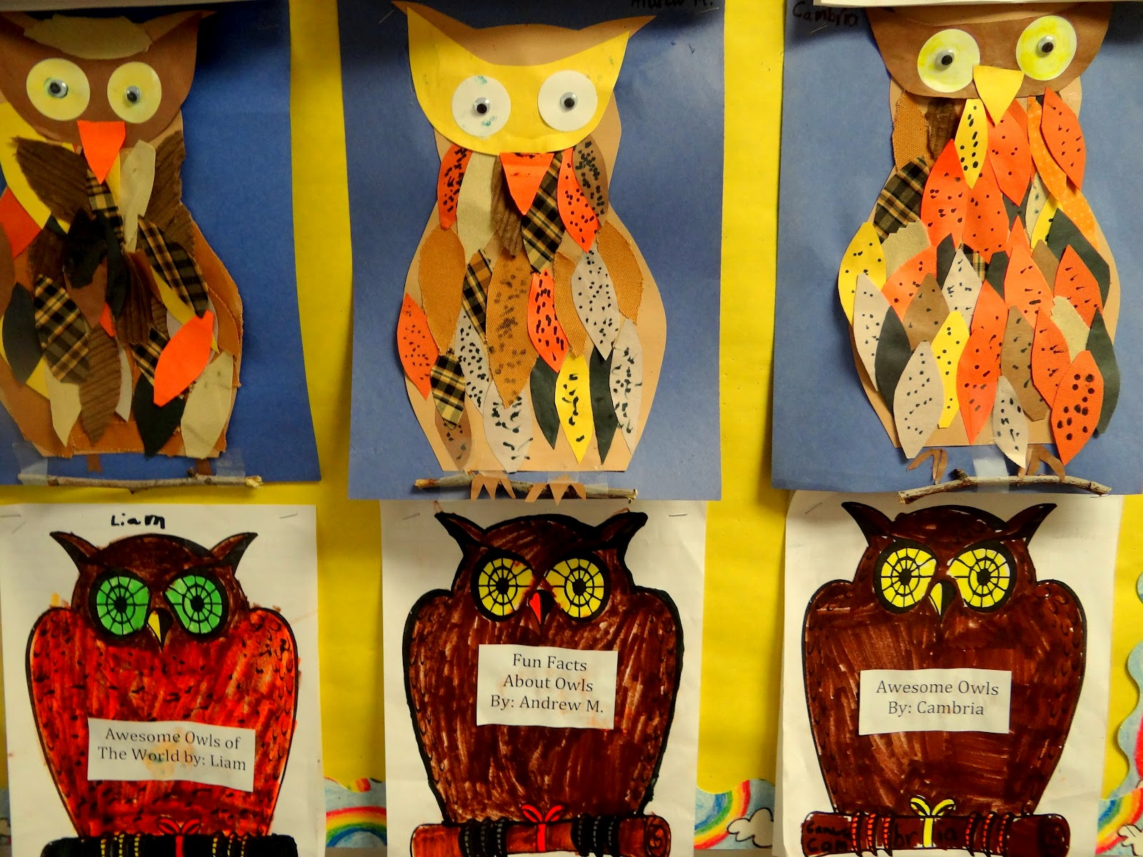 Owl Art Project Using Scrapbook And Construction Paper
