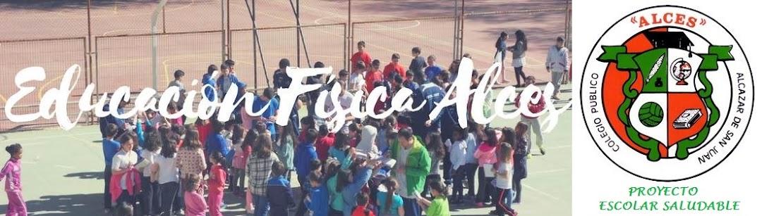 EDUCACIÓN FÍSICA ALCES 2017-2018